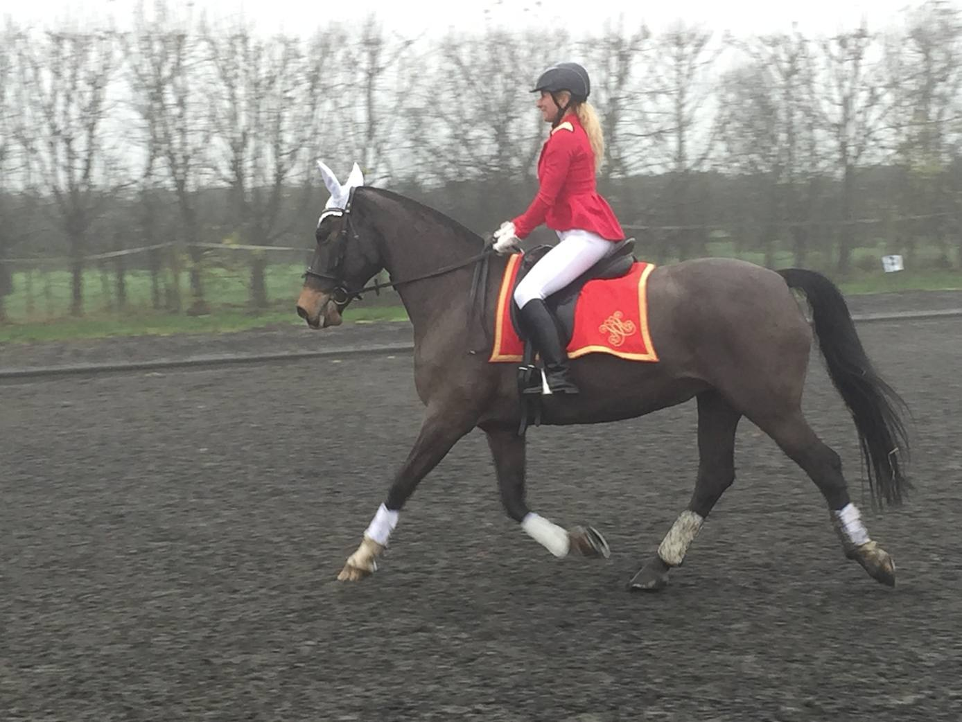 Hawthorne & Heaney Does Dressage Costumes London Hand Embroidery