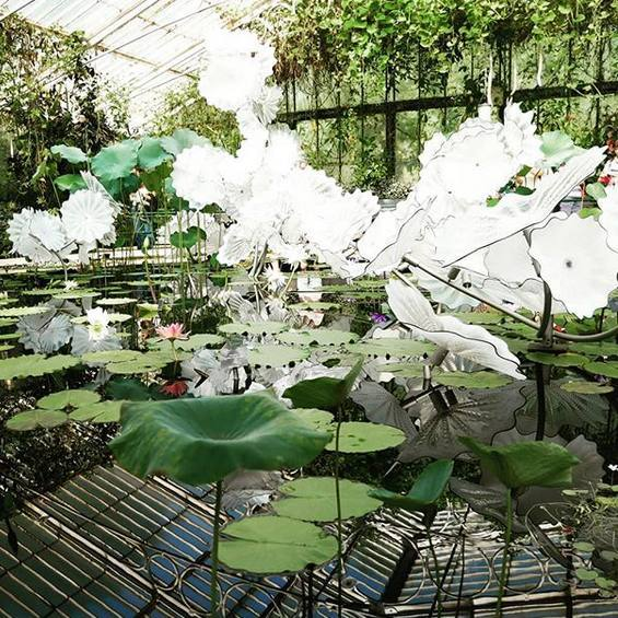 Hawthorne & Heaney visits Chihuly: Reflections on Nature at Kew Gardens London Hand Embroidery
